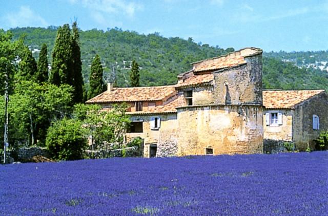 France Photo Tours - France Photo Workshops - Southern France Photography Tour