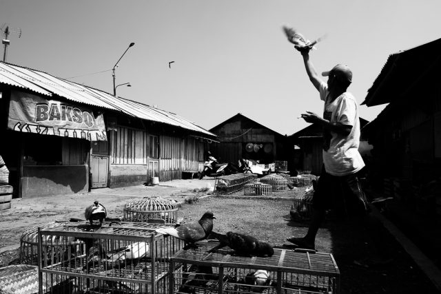 2017 Award Recipient - Bayu Wira Handyan - Anchell International Documentary Photography Scholarship
