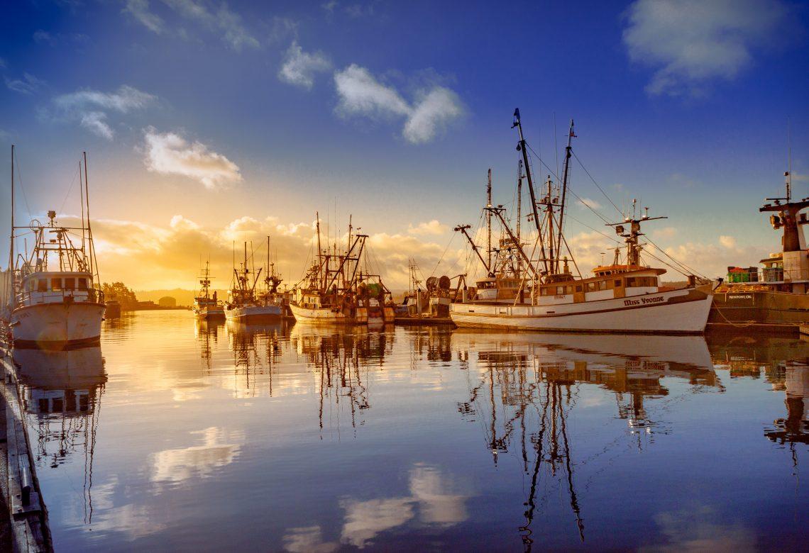 fishing vessels, blue sky, clouds, bay, pacific ocean, Newport Oregon